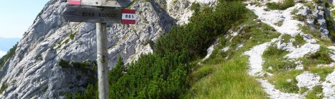 Monte Pizzocco m 2.186 - Dolomiti Feltrine (BL)